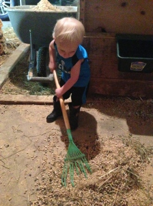 my littlest farmhand